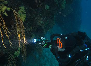Plongeur CCR Trimix normoxique
